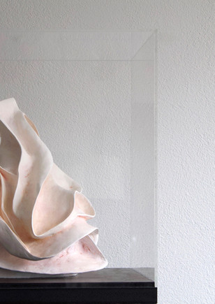 Blossom in orange 50x54x50cm