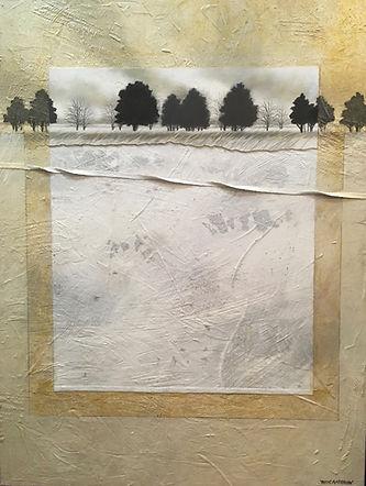 Textures & Trees 30x40 $2200.jpg