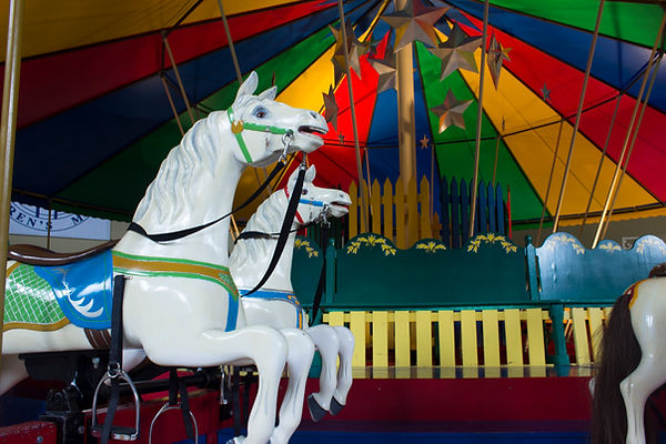 carousel_4.jpg