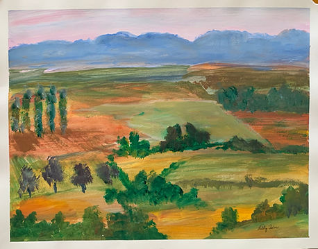 Landscape from the Air IRIS MITCHELL.jpg