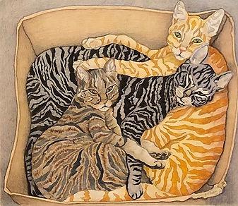 Cat Box by HONEY DEAN.jpg
