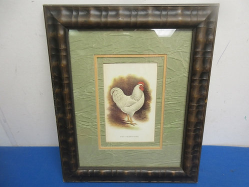 Rustic design framed rooster print with green/tan mat - white rooster - 14x17