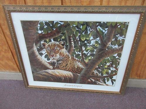 Sergenti Leopard print with gold ornate frame 31x25