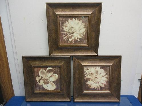 "Set of 3 white flower prints in wide bronze tone frames each 12x12"""