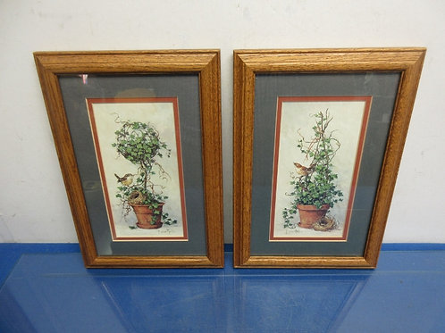 """Pair of prints of Ivy plants and sparrows in wood frames, 8x12"""""""