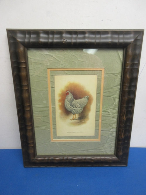 Rustic design framed rooster print with green/tan mat - gray rooster - 14x17