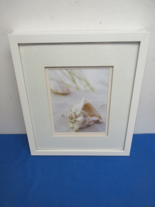 """White frame print of 1 large sea shell 16x17"""""""