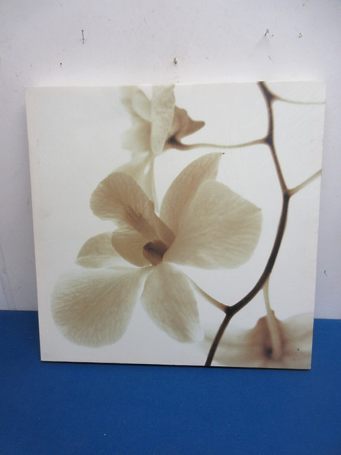 """Stretched vinyl print of large blossom flower, 20x20"""""""