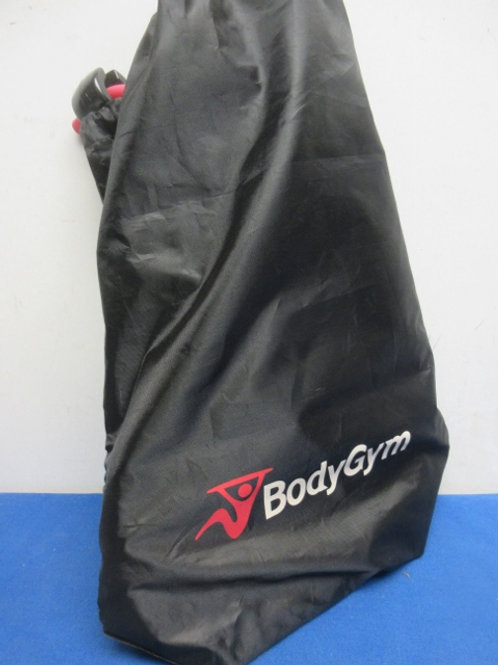Body gym band exercise system in carry bag