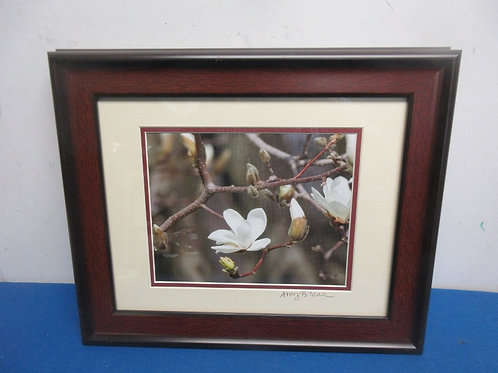 Close up framed photo of White tree blossom, cherry tone frame 14x17