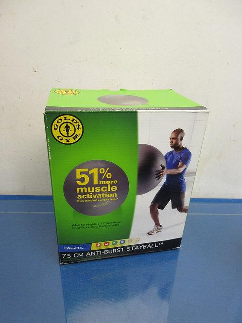 Gold  Gym 75CM anti burst stayball w/pump