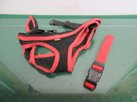 Black & red small dog harness &adjustable red collar