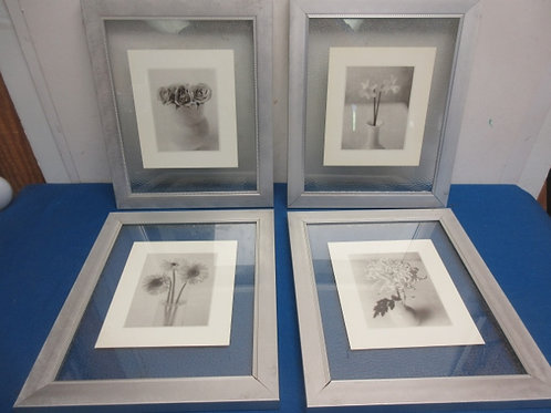 Set of 4 framed frosted glass prints of flowers, each in brushed silver frame