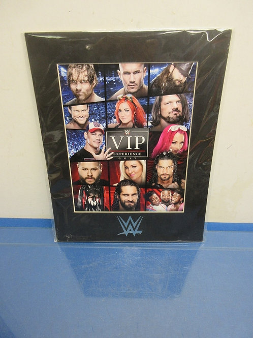 WWE VIP Experience-2017 photo with black mat 11x14
