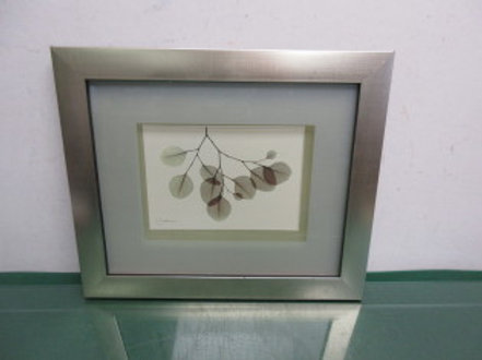 Green leaves on branch print with frosted glass matte and silver frame - 13x11