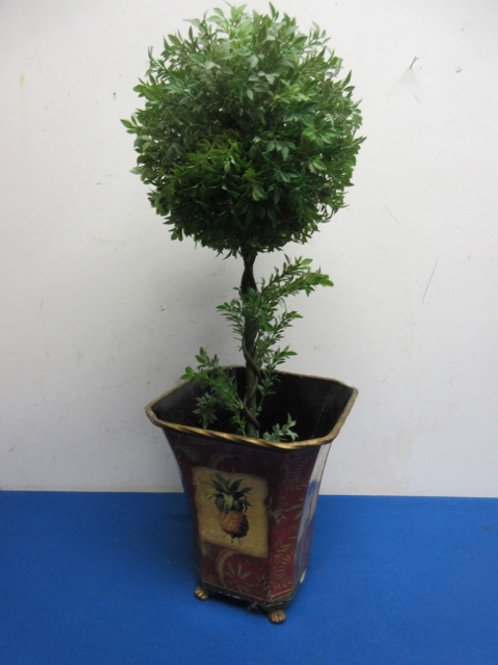 """Green leaf topiary tree in square red footed planter 22"""" high"""