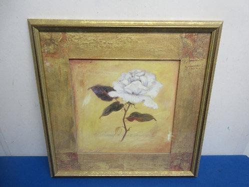 "Print of a single white rose, gold mat, gold frame, 18x18"""