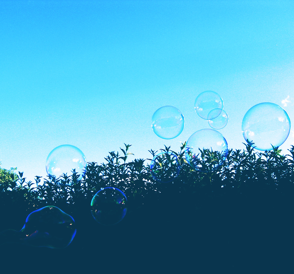 Bubbles floating against a bush and the sky.