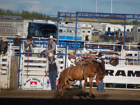 Wainwright Stampede Cancelled