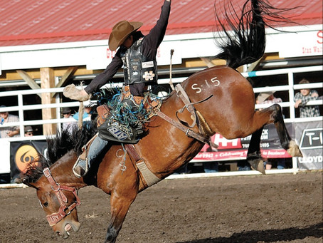Guts And Gusto - Lea Park Rodeo