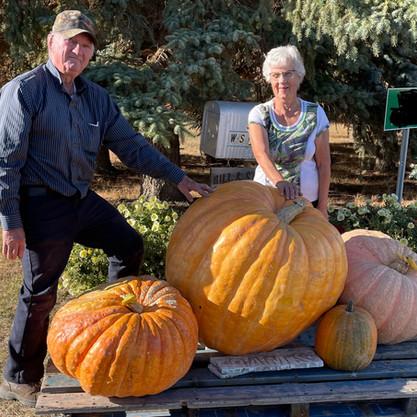 A Personal Best In Pumpkin Growing