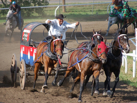 Wainwright's 65th Stampede Fast And Furious