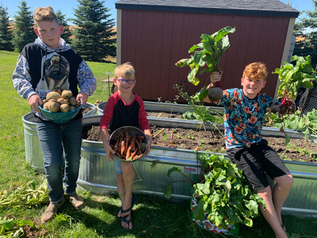Ag For Life To Launch 2nd Annual Junior Garden Club