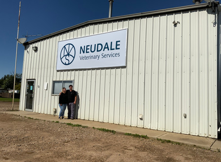 Neudale Veterinary Services Takes Over Dewberry Clinic