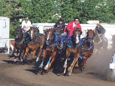 Bonnyville Chuckwagon Races And Chuckwagon Beerfest