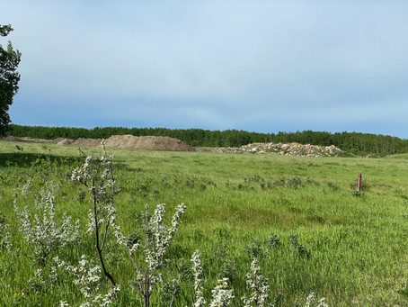 Old Landfill Will Not Be Subdivided