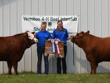 Vermilion 4-H Beef Interclub Show And Sale