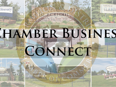 Chamber Of Commerce Hosts Business Connect