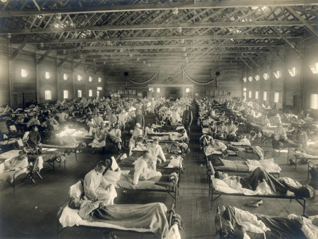 Our Future As Predicted By History: COVID-19 And The Spanish Flu