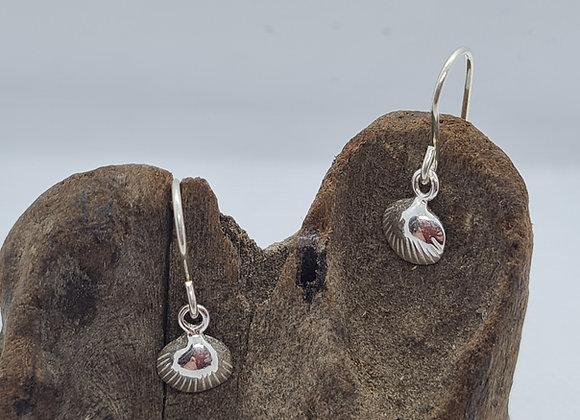 Clam shell sterling silver drop earrings