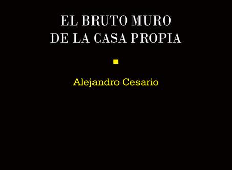El Bruto Muro de Alejandro Cesario