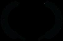 OFFICIAL SELECTION - 2018 - Rio Webfest