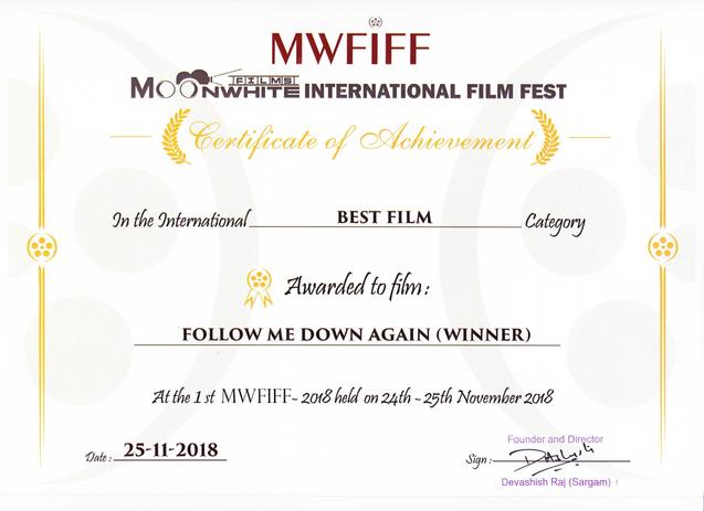 Follow Me Down Again Awards.png