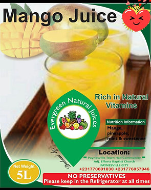 Evergreen Natural Mango Juice (5 liters)