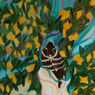 Lemon Tree Queen $530 USD