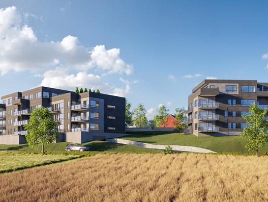 Termoenergi: Utfører Bygningsfysisk prosjektering Hjertås Panorama