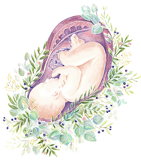 baby womb.png