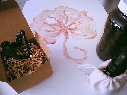 The Complete Placenta & Keepsake Package