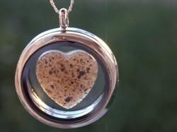 Placenta Love Locket $65