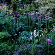 Mon 15-Feb-2021 at 2pm  - The Subtle Science and Exact Art of Colour in English Garden