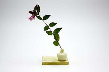 "Mini Bud Vase #2,  1"" t x 3/4"" w  Large seed pod on brass plate, wild flowers harvested from Pacific North West"