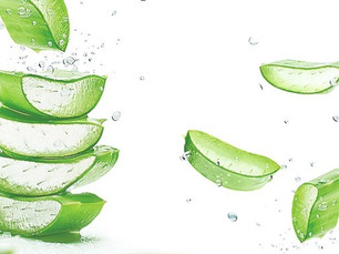 10 Benefits of Using Fresh Aloe Vera on Your Face