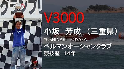 2019V3000.png