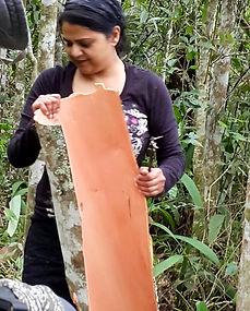 Nirmala w fresh Cinnamon.jpg