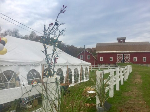 Nirmalas Farmstead Wedding Events.jpeg