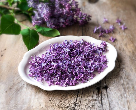 Fragrant Lilac Sugar in Spring- Vasanta Ritu